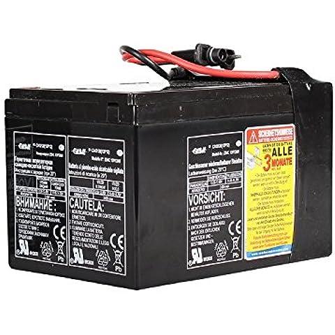 SEA-DOO Batterie, GTI/GTS, schwarz,11447