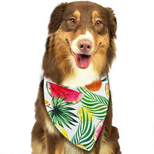 Exotische Frucht-mischung (Hipiyoled Exotische Tropische Mischung von früchten Muster Mode Hund Bandana Kragen waschbar reversiable einstellbar dreieck lätzchen)