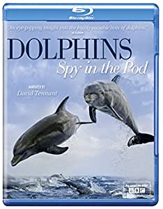 Dolphins Spy in the Pod [Blu-ray]