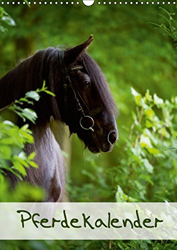 Pferdekalender (Wandkalender 2019 DIN A3 hoch): Schöner Hochformat-Pferdekalender mit 13 Motiven (Monatskalender, 14 Seiten ) (CALVENDO Tiere)