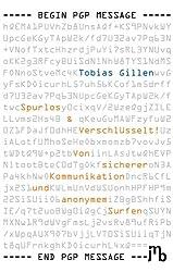 Spurlos & Verschlüsselt!: Von sicherer Kommunikation und anonymem Surfen