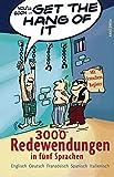 Get the Hang of it - 3000 Redewendungen in fünf Sprachen - Peter Panton