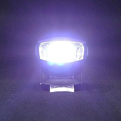 Collory mini LED Silikon-Leuchten Set inkl. Batterien | Kinderwagen-Beleuchtung | Wasserfeste Sicherheitsleuchten | Tretroller-Licht | Kinder Laufrad Lampen | Einfache Montage ohne Werkzeug | Schwarz von Collory bei Outdoor Shop