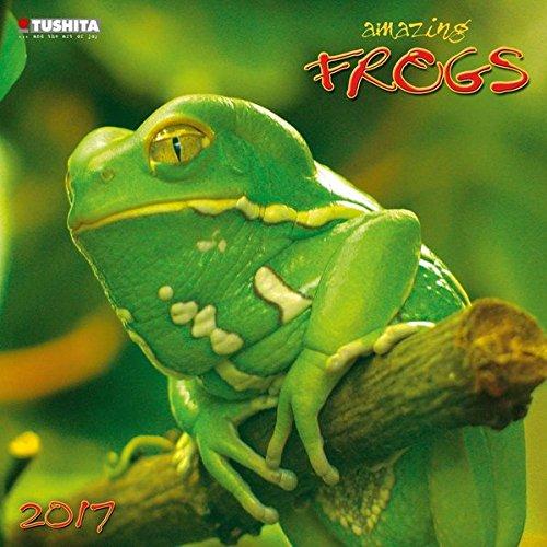 Preisvergleich Produktbild Amazing Frogs 2017: Kalender 2017 (Wonderful World)