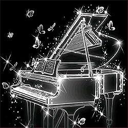 Dinglong Peinture de Diamant, 5D Broderie Peinture Strass Fond de Piano d'art Noir et Blanc Croix brodée Diamant Broderie mosaicques Diamond Wall décalcomanies