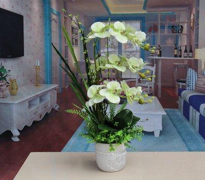 SituMi Fake Flores artificiales adornos Hogar Bonsai orquídeas Salón decoración verde E
