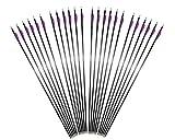 Huntingdoor 12er 32 Zoll Huntingdoor Carbonpfeile für den Bogensport alle Recurvebögen Bogenschießen
