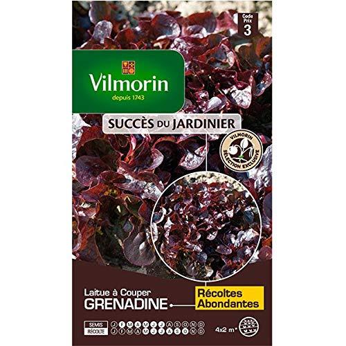 Vilmorin - Sachet graines Laitue à couper grenadine