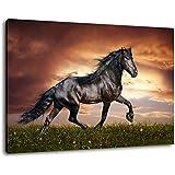 cheval noir image de toile taille 100x70 cm peinture sur toile couverte des images normes. Black Bedroom Furniture Sets. Home Design Ideas