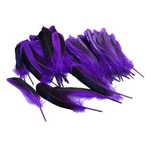 Lila Flügel Feder Kostüm - Fenteer 50 pcs Bunte Flügel Federn Ente Federn Feather Schmuckfeder zum Basteln - Lila