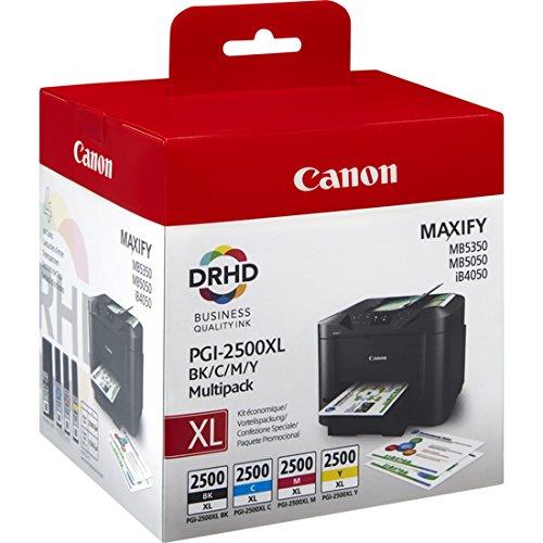 Canon Tintenpatrone pgi-2500 im Test