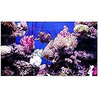 Leo565Tom Acuario pecera Fondo 61 x 30 cm / 91 x 50 cm Pintura Decorativa de PVC Grueso Coral Mar Vivido Jellyfish Seabed Pegatina Acuario océano Paisaje Póster Fondo del Tanque de Peces