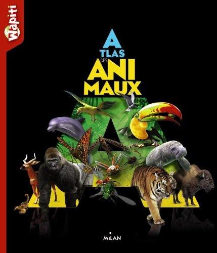 Atlas des animaux Wapiti