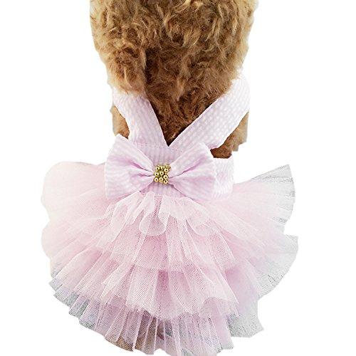 Boodtag Haustier Kleid Gestreifte Hund Rock Prinzessin Spitze Kleidung Frühling Sommer Kostüm Bekleidung mit Bowknot für Kleinen Hunde Teddy Pink Bubble Kleid