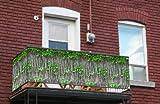 myfence Balkonsichtschutz mit Motiv: Robin als Blickschutzin der Größe 500cm x 120 cm wie Balkonumspannung auf Vollplane