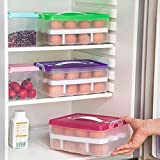 #9: MSE Most comfortable & Portable Double Layer Refrigerator Food 24 Eggs Airtight Storage Container Plastic Box (Pack of 1)(colour as par availablity)