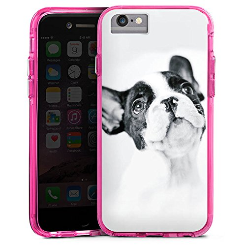 Apple iPhone 6 Bumper Hülle Bumper Case Glitzer Hülle Hund Bulldogge Dog Bumper Case transparent pink