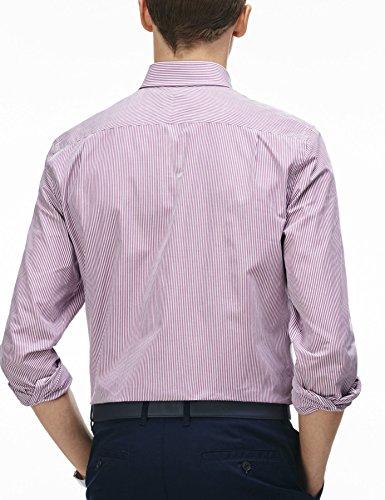 Chemise Lacoste CH3969 purple