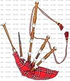 Great Highland Bagpipe Dudelsack *Neu* Rosenholz Rosewood