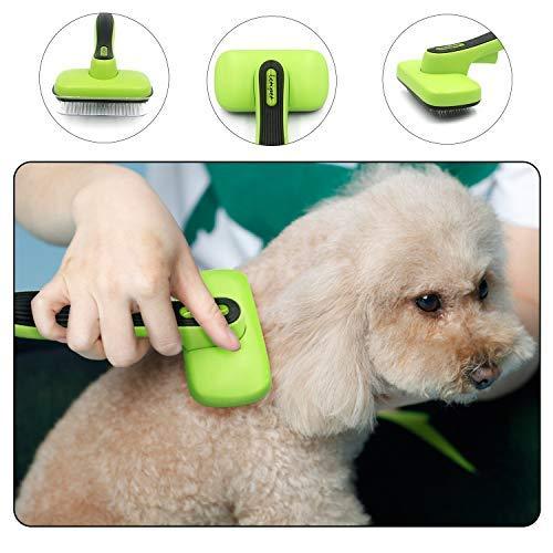 Toys Ball Plüschbär Hundebürste Zupfbürste für Hunde Hunde Hunde Hunde Bürsten für Haaren Selbstreinigende Zupfbürste Kauspielzeug Quietschen Ungiftig - Gedruckt Von Boa