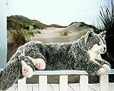 Kösener 5461 Maine Coon Kater, grau, liegende Katze 74 cm lang