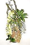 Seidenblumen Arrangement Kunstblumengesteck künstliche Blumendekoration TD36-01