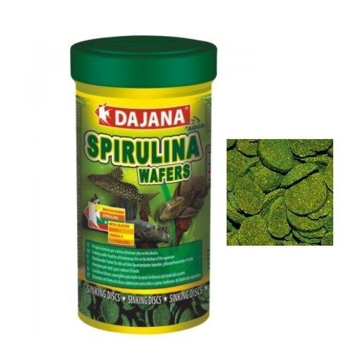 Dajana Spirulina Wafers - Mangime per tutti i pesci erbivori di fondo (250 ml)