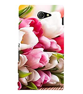 ifasho Designer Back Case Cover for Sony Xperia M2 Dual :: Sony Xperia M2 Dual D2302 ( Internet Dating Designer Jewlery Allahabad Search Music Navsari)
