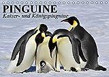 Pinguine - Kaiser- und Königspinguine (Tischkalender 2019 DIN A5 quer): Im Sonntagsfrack durch Eis und Schnee (Geburtstagskalender, 14 Seiten ) (CALVENDO Tiere)