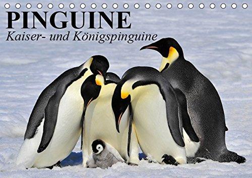 Pinguine - Kaiser- und Königspinguine (Tischkalender 2019 DIN A5 quer)