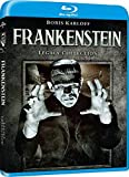Frankenstein (1931) [Blu-ray] [Import italien]