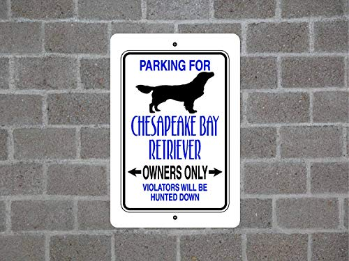 Chesapeake Metall (Fhdang Dekoration, Parkplatz für Chesapeake Bay Retriever Guard Dog Breed Metall Aluminium Yard Zaun, Metallschild, 30,5 x 45,7 cm)