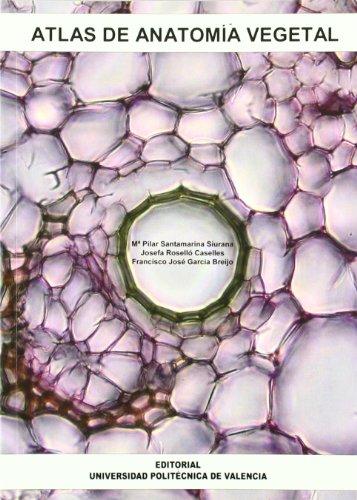 Descargar Libro Atlas de anatomía vegetal (Académica) de Francisco José García Breijo