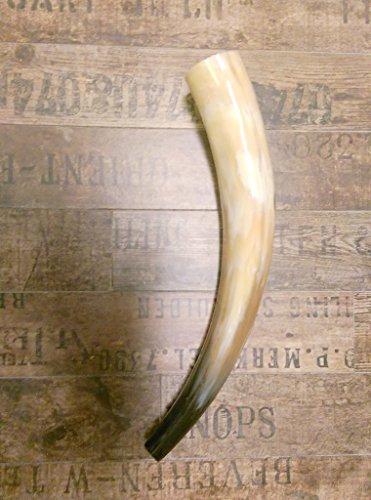 1-hirschlocker-blashorn-rufhorn-ca-35-40-cm-lang-farbe-brauntone-fertig-poliert-10mm-blasloch-fix-un