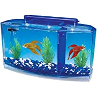 Penn-Plax Deluxe Triple Betta Bow Aquarium Tank, 0.7-Gallon
