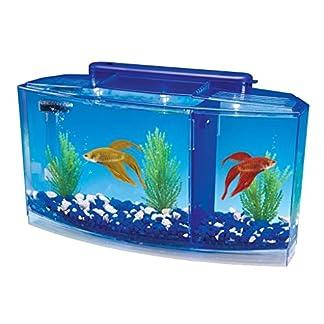 Penn-Plax Deluxe Triple Betta Bow Aquarium Tank, 0.7-Gallon 7