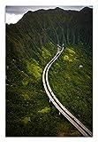 Kaneohe Hawaii Leinwandbild, Motiv Tausende Gesichter, grünes Portraitbild, Heimdekoration, Wohnzimmer, Badezimmer, Schlafzimmer, Küche, Bild (61 x 91 cm)