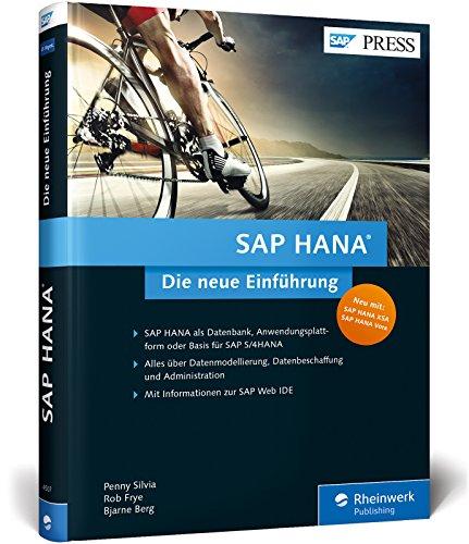 sap-hana-die-neue-einfhrung-in-memory-technologie-werkzeuge-datenbeschaffung-und-datenmodellierung-s