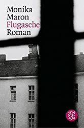 Flugasche: Roman