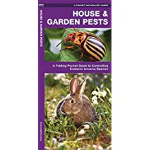 House & Garden Pests: How to Organically Control Common Invasive Species