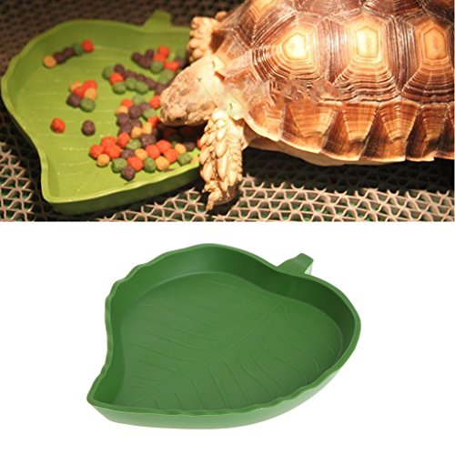 Yanhonin Schüssel für Reptile, Futternapf, Wasserschale, Blattform