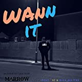 Wannit (feat. 3c & Nick Maitre) [Explicit]