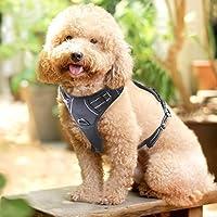 Correa de Perros Arnés de Mascotas Domésticas Correa con Manija y Material Reflectante Fácil de Andar Sin Cinturón Color Negro Tamaño Mediano
