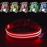 LED Hundehalsband USB Aufladbare, Pawow Halsband Hund Einstellbarer Halsumfang Sicherheits Leuchtendes Halsband für Hunde - Machen Sie Ihr Haustier Nachts Sicher