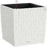 Lechuza Cube Cottage 50 Set Completo Vaso in Resina per Piante, Bianco
