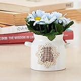 Aoligei Keramik kleine wilde Chrysantheme Simulation Blumen Pflanzen Haus Dekoration Topfpflanzen jeder Satz von zwei Töpfe 7*12cm
