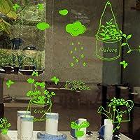 Pegatina vinilo verde pistacho para decorar ventanas mini invernaderos escaparates 1.10 x 85 cm personalizables de