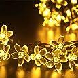 lederTEK alimentata solare fiore fatato luce laccio 7M 50 LED impermeabile Fiorire Natale lampada decorativa per scoperta, giardino, casa, Matrimonio, Natale Albero Partito di Capodanno (50 LED bianco caldo)