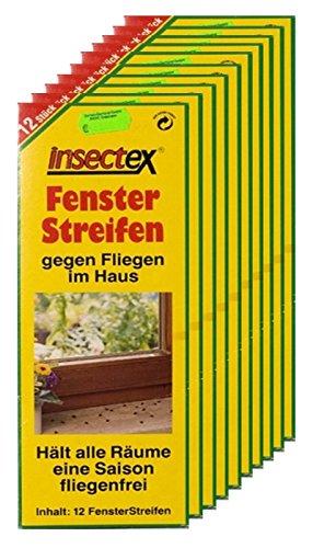 Fliegen Fenster Streifen Insectex 10er Sparpaket + 20g Kressesamen Sprint
