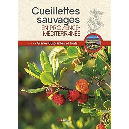 Cueillettes sauvages en Provence-Méditerranée : 60 plantes et fruits à glaner